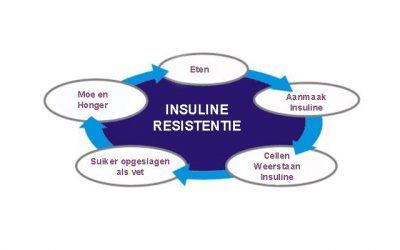 Insulineresistentie de visie van een huisarts 2.0