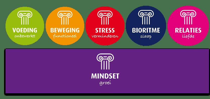 5 zuilen van een gezonde leefstijl op en basis van mindset