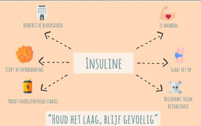 Insuline, insulineresistentie en meer