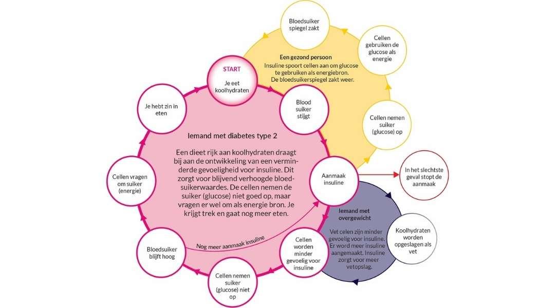 Voeding en Diabetes type 2 oorzaak en oplossing